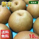【送料無料】福島県産 梨 新高 24~28玉入り 10kg