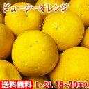【送料無料】愛媛県産 ジューシーオレンジ L~2Lサイズ 18~20玉入り(箱)