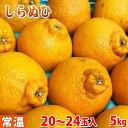 和歌山県産 不知火(しらぬひ) 18〜24玉入 5kg