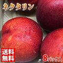 【送料無料】長野県産 ネクタリン 3L〜5Lサイズ 8パック入り箱