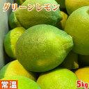 高知県産 レモン(グリーンレモン)秀品 M~Lサイズ 5kg (箱)