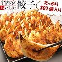 宇都宮おいしい餃子(冷凍) 300個 本場宇都宮より直送