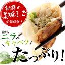 宇都宮おいしい餃子 100個 国産肉野菜使用 冷凍 業務用 ニラと生姜がきいてる! 送料無料(