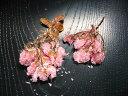 桜花塩漬け(1kg)国産 桜花漬 寒山