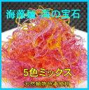 海の宝石プチプチつるつる海藻麺 5色ミックス 1K天恵ジャパン海の宝石