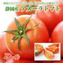 静岡産アメーラトマト【秀品】9〜16個(約1キロ)