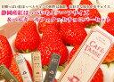 ベルギーカフェタッセチョコ&特大紅ほっぺいちごハーフサイズ(12粒or15粒)