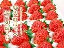 <セリ価格下落のため1/5値下げ♪>静岡産紅ほっぺいちご特大サイズ(24or30粒入)