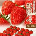 静岡産紅ほっぺいちご特大サイズ(24or30粒入)