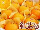 愛媛産柑橘「紅まどんな」2Lサイズ【赤秀品】12個入り(約3キロ)【専用箱入り】