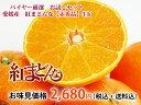 バイヤー厳選!お試しセット 愛媛産柑橘「紅まどんな」2Lサイズ【赤秀品】3個セット