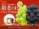 敬老の日 ラッピング 2色ぶどうセット(ナガノパープル&シャインマスカット)