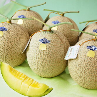 Gastronomy Japan-Discover Gourmet Japan-Shizuoka Prefecture from cantaloupe in ball 6