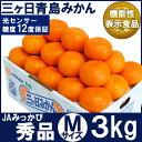 三ケ日青島みかん【秀品】Mサイズ3キロ(27個前後)(三ヶ日みかん)