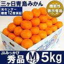三ケ日青島みかん【秀品】Mサイズ5キロ(45個前後)(三ヶ日みかん)