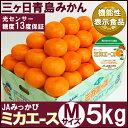 三ケ日青島みかん【特選品】ミカエースMサイズ5キロ(三ヶ日みかん)