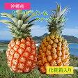 沖縄産ピーチパイン&スナックパイン(化粧箱入り)