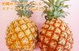 【ご自宅用】沖縄産ピーチパイン&スナックパインお試しセット