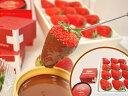 《1/6以降順次ご発送!》静岡産紅ほっぺ12粒または15粒&Favarger濃厚チョコフォンデュ用チョコレートセット(150g単品)
