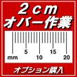 PDF自炊代行【A4以上の本】オプション購入