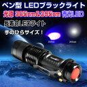 ペン型 LEDブラックライト 2000時間長寿命 ブルーライト 365nm&395nm 青光LED 高輝度100Lm 最大照明50m ◇ALW-TANK007