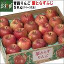 お歳暮にも【ゴールド農園 葉とらずふじ 約5Kg(14〜20玉)】青森りんご・葉とらずりんご