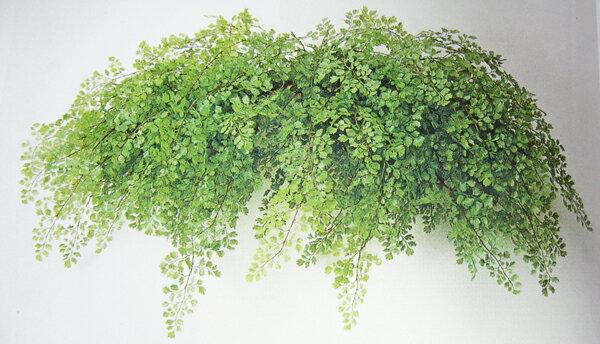 観葉植物 造花 人工観葉植物 消臭・抗菌 UDD触媒 アジアンタムスワッグ 壁掛け 壁面緑化 フェイクグリーン 【RCP】