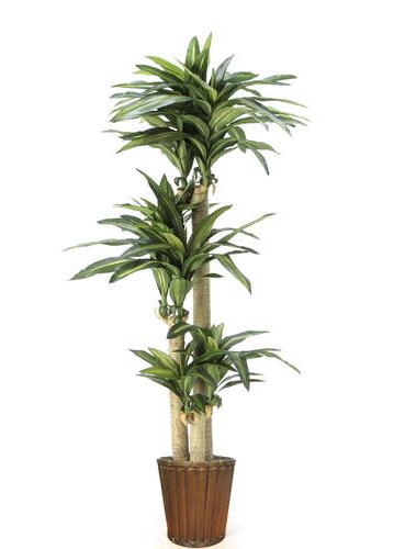 観葉植物 造花 大型 人工観葉植物 消臭・抗菌 UDD触媒 ドラセナ「幸福をあなたに♪」175cm 幸福の木 フェイクグリーン 【RCP】 【光触媒 フェイクグリーン】感嘆のため息…本物以上の極上品♪幸福のお裾分け♪どちらに贈っても恥ずかしくない「幸福の木」ギフト対応いたします!