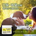 Dr.ぱくぱく 犬用口臭・体臭予防サプリメント 小型犬〜大型...