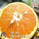 ☆速攻出荷☆ みかん 訳あり 和歌山県産 バレンシアオレンジ 2.5kg 送料無料 (一部地域除く) 柑橘 果物 フルーツ みかん ※サイズ混合 (約12玉~20玉)