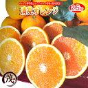 みかん 訳あり ☆あす楽対応☆ 清見 オレンジ タンゴール ...