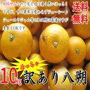 【あす楽対応】【規格外品】 訳あり八朔 10kg (約25玉...