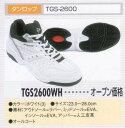 ■激安シューズ■ダンロップ入門用 TGS2600