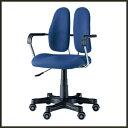 【送料無料/あす楽】【正規代理店】DUOREST デュオレスト《DR-260》ワークチェア PCチェア OAチェア オフィスチェア ロッキング チェア 椅子 腰痛 【10P01Oct16】