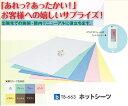 【送料無料】【無料健康相談 対象製品】ホットシーツ (TB-663) 高田ベッド