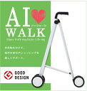 AI-WALK 