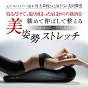 楽天Shop de clinic楽天市場店【正規代理店】MTG Style(スタイル) Athlete Pole ブラック