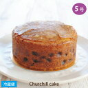 チャーチルケーキ 5号サイズ 直径約15cm フルーツケーキ ENGLISH FRUIT CAKE