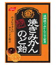 ノーベル 焼きみかんのど飴 90g 【正規品】