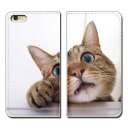 Galaxy Feel2 SC-02L ケース 手帳型 ベルトなし ペット 猫 ネコ ねこ 動物 スマホ カバー アニマル02 eb24003_01