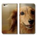 iPhone8 (4.7) iPhone8 ケース 手帳型 ベルトなし 犬 いぬ ペット ミニチュアダックス スマホ カバー 犬写真 eb29104_05