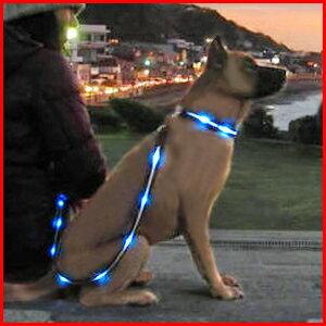 送料無料 リード 首輪 犬 ワンちゃんの光るリード きらきらリード 140cm LED リード キラキラリード 夜間 散歩 ドッグラン 事故防止 小型犬 中型犬 大型犬 発光ダイオード 1.4m