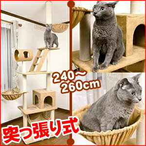 ネコちゃんタワーつっぱり式[CIO71]全高240〜260cmキャットタワーねこちゃんタワーネコタワーアスレチックタワーシングルネコ用品ペット遊び場所寝床猫