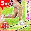 トレーニング トレーニングラダー プレート 9枚 5m イエ...