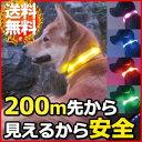 【メール便送料無料】 【 S M L XL の4サイズ 】【 5カラー展開 】 光る首輪 きらきらバ