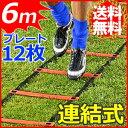 【送料無料】 トレーニングラダー プレート12枚 6m オレ...