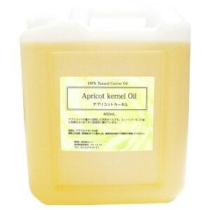 アプリコットカーネルオイル あんず油、杏仁オイル 10