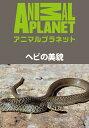 ヘビの美貌【動画配信】