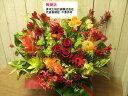 送料無料 ご用途「開店開業・開院開所」お祝い アレンジメント♪開店祝い 花 開店 オープン 花 ギフ