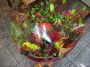 送料無料 花束(ブーケ)レッド系F フラワーギフト 還暦祝い 花 お誕生日 お花 フラワーギフト 還暦祝い 父 母 【メッセージカード付き】